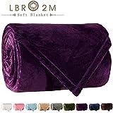 LBRO2M Fleece Bed Blanket King Size Super Soft Warm Fuzzy Velvet Plush Throw Lightweight Cozy Couch Blankets ((90x104 Inch) King, Purple)