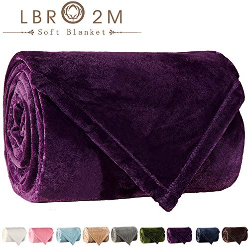 LBRO2M Fleece Bed Blanket King Size Super Soft Warm Fuzzy Velvet Plush Throw Lightweight Cozy Couch Blankets ((90x104 Inch) King, Purple) (Cheap Couches Super)