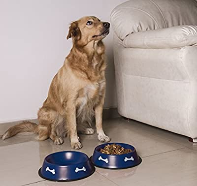 Gpet Dog Bowl 32 Oz Made of Stainless Steel for Long Durability with Rubber Base That Bowls Wont Slip, Pet Use for Water and Food Made for Puppy, Beautiful Dish in Blue Color (Set of 2)