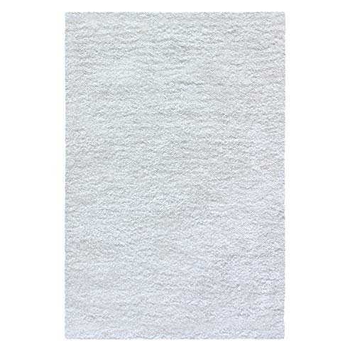 (Superior Collection Hand Woven Shag Rug 6'x9' - White)