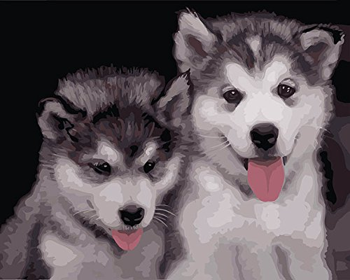 DoMyArt Paint By Number Kits - Two Lovely Dogs 16X20 Inch