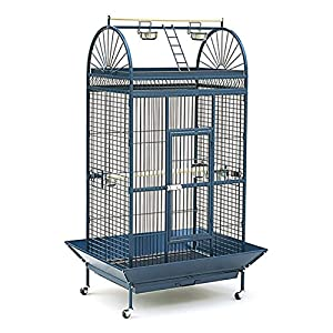 Great value parrot cage