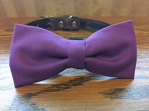 Purple-Dog Bow Tie by Creations by Glo