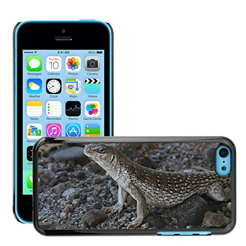 Stampato Modelli Hard plastica Custodie indietro Case Cover pelle protettiva Per // M00104650 Lizard Desert Reptile animal // Apple iPhone 5C