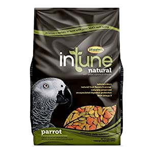 Higgins 466253 Bird Food Formula, One Size 90