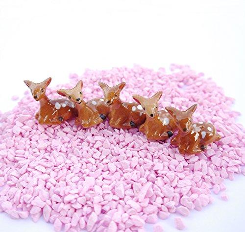 5 Pcs Animal Dollhouse Miniatures Figurine Decor Toy Gift (Bespaq Dollhouse Miniatures)