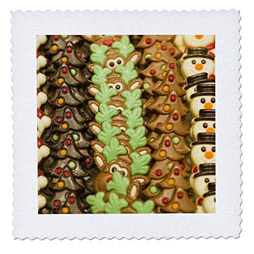 16 Belgian Chocolate - 3dRose Danita Delimont - Candy - Belgium, Bruges. Belgian chocolate shop. - 16x16 inch quilt square (qs_313065_6)