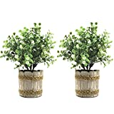 SHACOS 2 Pack Artificial Potted Plants 9.5 inch,Plastic Bonsai Plant with Retro Cement Planter Fake Greenery for Home Office Garden Decor (White Gypsophila, 2)