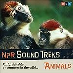 NPR Sound Treks: Animals: Unforgettable Encounters in the Wild    NPR