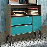 Manhattan Comfort Gota Single Door Console Table in Oak Aqua Gray