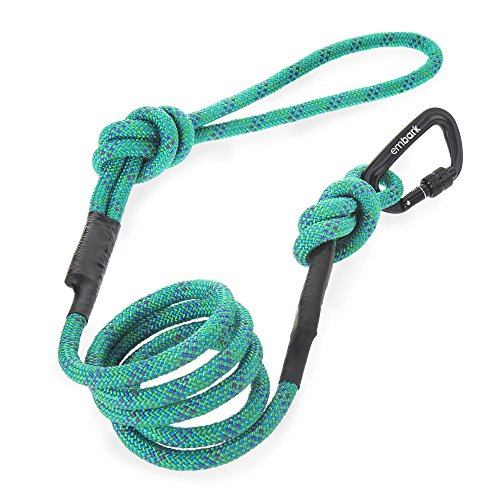 Embark Pets Sierra Leash Turquoise product image