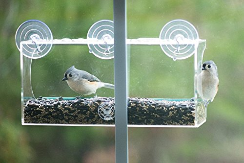 Grateful Gnome - Long Window Bird Feeder for Small and Large Birds. Now With Drain Holes!