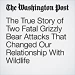 The True Story of Two Fatal Grizzly Bear Attacks That Changed Our Relationship With Wildlife | Karin Brulliard