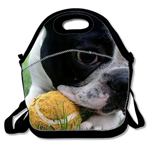 oys Polyester Food Handbag for Kids with French Bulldogs Gonzo ()