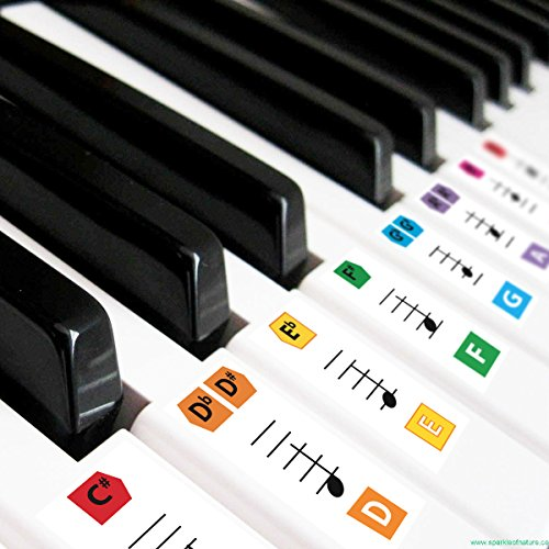 Best Reusable Large Color Piano Key Note Keyboard Stickers for Adults & Children's, FREE E-BOOK, Great for Beginners Sheet Music Book, Teacher Recommended to Learn to Play Keys & Notes Faster Age Note Cards
