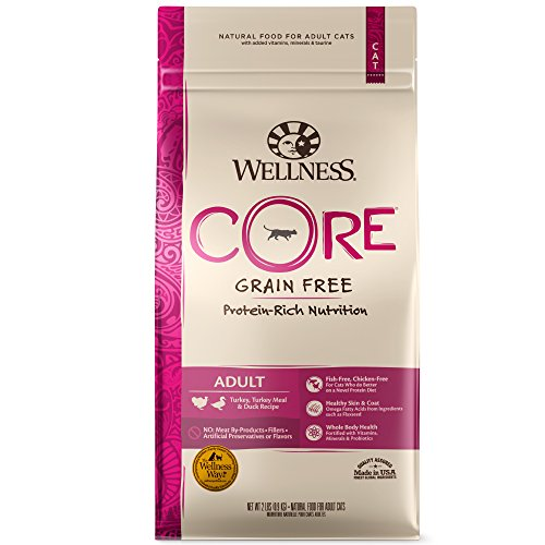 (Wellness Core Natural Grain Free Dry Cat Food, Turkey, Turkey Meal & Duck Recipe, 11-Pound Bag)