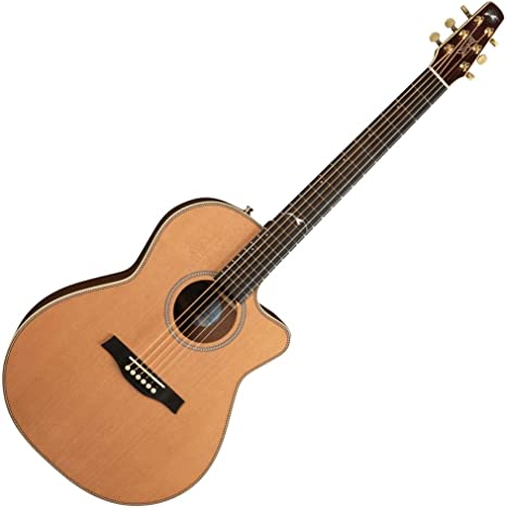 Seagull Artist Mosaic Folk CW E · Guitarra acústica: Amazon.es ...
