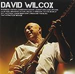 ICON: David Wilcox
