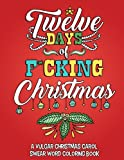 Twelve Days of F*cking Christmas: A Vulgar Christmas Carol Swear Word Coloring Book for Adults to Laugh, Relieve Stress and be Merry this Holiday Season (Volume 1)