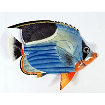 Handpainted tropical fish replica wall mount decor plaque blue wave 8 home kitchen for Decor star 005 ss