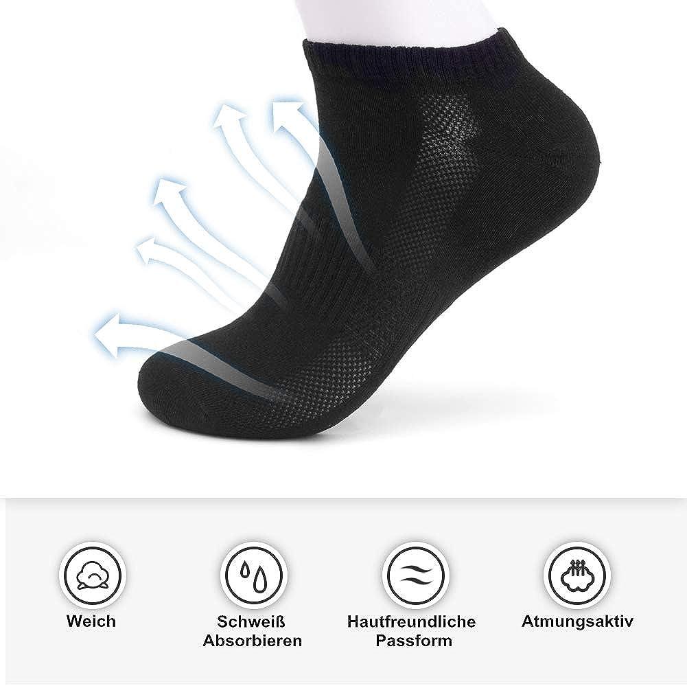 8 paires Chaussettes courtes Chaussettes basses en coton Chaussettes de sport avec bord c/ôte confortable Smart Sir Hommes Femmes Chaussettes de cheville
