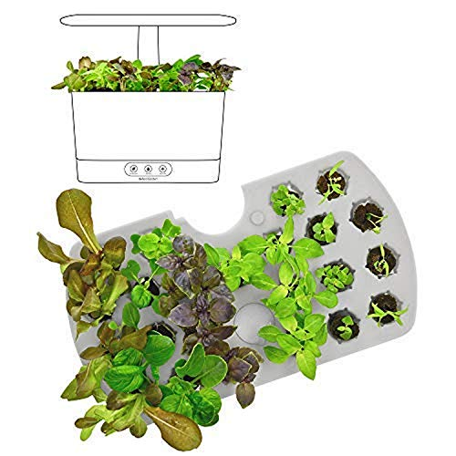 Hydroponic Seed Starter System Kit Indoor Garden Led Grow Anything Ebay
