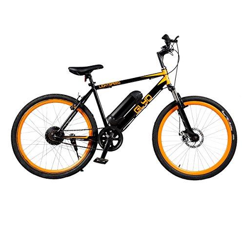 Diesel Bike
