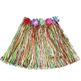 Luau Beach Party Halloween Costume Party Hawaiian Dance Hula Skirt Grass Skirt, multicolor