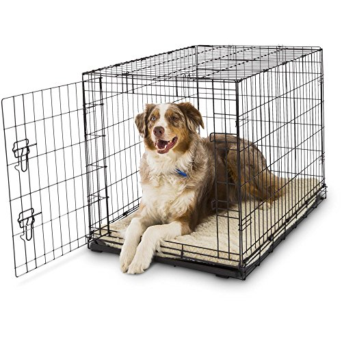 "Petco Classic 1-Door Dog Crate, 36"" L x 23"" W x 25"" H, Large, Black"