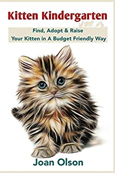 Kitten Kindergarten: Find, Adopt & Raise Your Kitten in A Budget Friendly Way - Proper Care for the First Year by [Olson, Joan]
