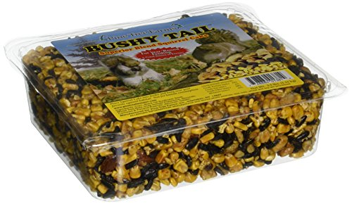 Pine Tree Farms 1381 Bushy Tail Cake, 2.5 Pounds - Pine Shell Nuts