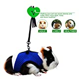 PERSUPER Soft Mesh Small Pet Harness with Safe