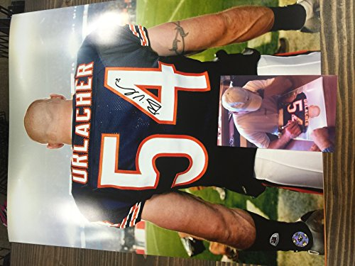 Brian Urlacher Signed Autographed Chicago Bears 16x20 Photograph Urlacher Authentics Personal Player (Brian Urlacher Photograph)