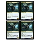 Magic: The Gathering - Maraleaf Pixie - Throne of Eldraine - x4 Card Lot Playset
