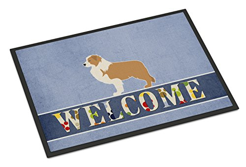 Red Border Collie - Caroline's Treasures BB5526JMAT Red Border Collie Welcome Doormat, 24 x 36, Multicolor