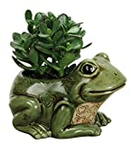 Nature's Garden Porcelain Frog Planter