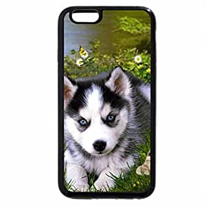 iPhone 6S Plus Case, iPhone 6 Plus Case, Dog & cat