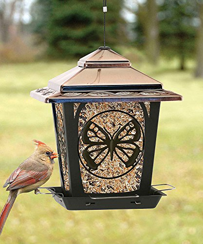 Hopper Style Bird Feeder With Buttefly Design from Woodlink