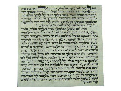 (Kosher 10cm Mezuzah Scroll 4 Inch klaf Mezuza Parchment - Elegnat)