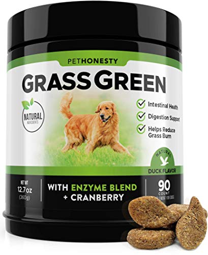 PetHonesty GrassGreen Grass Burn Spot Chews for Dogs - Dog Pee Lawn Spot Saver Treatment Caused by Dog Urine - Cranberry, Apple Cider Vinegar, DL-Methionine Grass Treatment Rocks - 90 Chew Treats (Best Grass For Dog Pee)