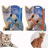 Gizhome 2 Pack Cat Harness and Leash Adjustable Halter Harness Nylon Strap Belt Safety Rope Leads for Kitten, Orange & Light Blue