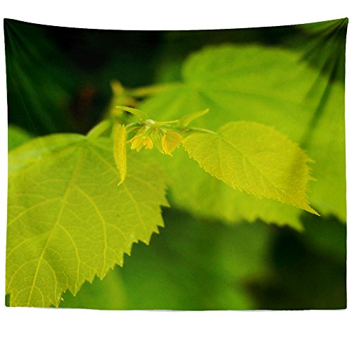 Cheap  Westlake Art - Tree Leaf - Wall Hanging Tapestry - Picture Photography..