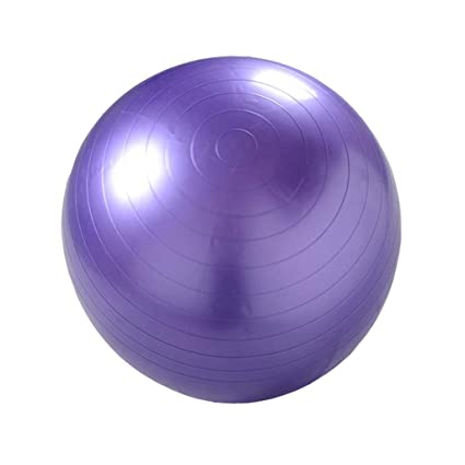 Amazon.com: YXLAB Anti-Burst Anti-Slip Exercise Ball,Yoga ...