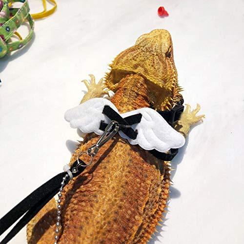 Livedeal Arnés Ajustable de Lagarto para Reptiles, Cuerda de ...