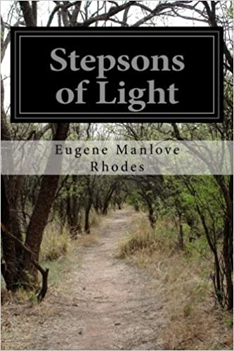 Book Stepsons of Light