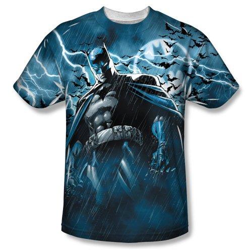 Batman - Stormy Knight T-Shirt Size L ()