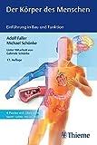 Der Körper des Menschen - Einführung in Bau und Funktion