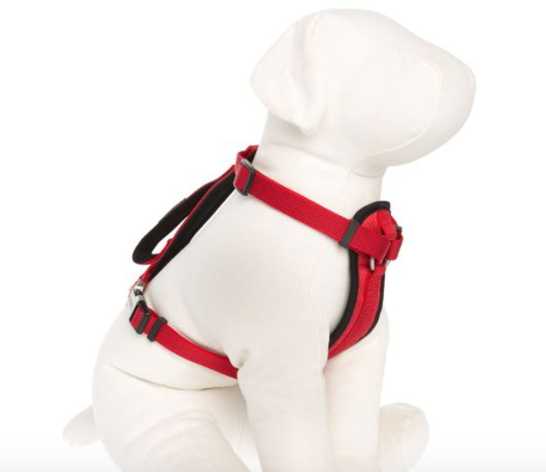 KONG Comfort Padded Chest Plate Dog Harness offered by Barker Brands Inc(Large, Red).