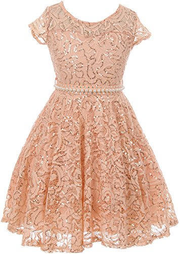 - Big Girl Cap Sleeve Floral Lace Glitter Pearl Holiday Party Flower Girl Dress Blush 16 JKS 2102
