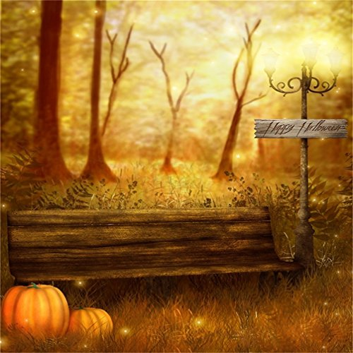 AOFOTO 5x5ft Child Photography Studio Backdrop Photo Shoot Background Halloween Forest Pumpkin Couch Road Lamp Blurry Grass Tree Kid Boy Artistic Portrait Video Props Autumn Park Scene - Park Scene